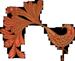Lyn Cikara bird icon